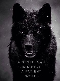 A wolf And a gentleman...nice