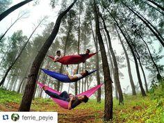 #Repost @ferrie_peyie  KITA.. Pencinta terik Penikmat Senja. BAHAGIAAA.. - LokasiHutan Pinus KM.40Bener Meriah - @acehvacation #wisataaceh  #ig_aceh  #enjoyaceh  #tapaknanggroe  #exploregayo  #wonderfulgayo  #wonderful_location  #exploreaceh  #exploreindonesia  #travellerindonesia  #hammock  #hammocklife  #hammockersindonesia by @acehvacation