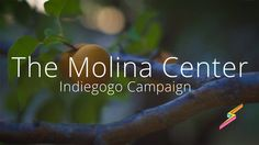 The Molina Center is a great non-profit on the Western Slope here in Colorado. They have a integrated vision for tackling the challenges of both personal sustainability and global sustainability by taking in at-risk youth and the community at large and blowing their minds with great education and inspiration... I think they are really on to something!  see them at www.themolinacenter.org  music: Lost and Found (instrumental) by Katie Herzig, with permission