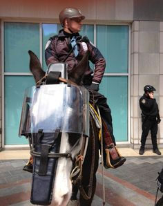 Seattle Police riot ponies.