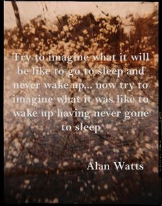 alan watts quotes | Alan Watts quote | Specula-tions on Life's Oddities › borrowed ...