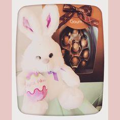 Coelhinho da Páscoa o quw trazes pra mim? #FelizPascoa #HappyEaster #chocolate #gourmet #foodies #BalaiodeEstiloS
