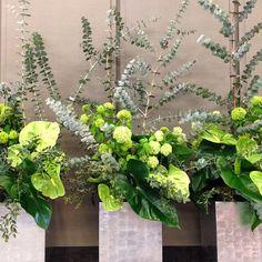 Flowers of the week: Silver Dollar Eucalyptus, Green Anthurium, Anthuriun Leaves, Snowball Viburnum, Parafagolio.
