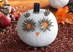 Woo. Woo. Who's going to make Pumpkin Owls with their kids this Halloween?