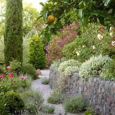 California-friendly garden- Sunset Magazine