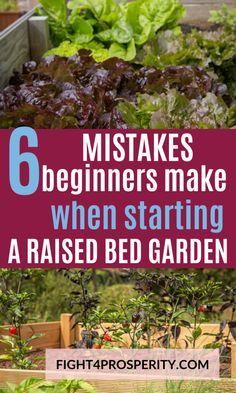 Vegetable Garden For Beginners, Backyard Vegetable Gardens, Veg Garden, Vegetable Garden Design, Gardening For Beginners, Lawn And Garden, Garden Seeds, Small Garden Vegetable Growing, Vegtable Garden Layout
