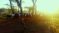 At Buffalo Luxury Camp we offer all our guest the opportunity to enjoy a bush dinner in a unique boma setting with an incredible panorama of the Serengeti which provides the perfect backdrop to this wonderful experience. Get Closer. Be Closer. #IntimatePlaces #Tanzania #Serengeti #Bush #Dinner #Sunset #UltimateSafariExperience www.intimate-places.com Serengeti National Park, Private Games, Luxury Camping, Tanzania, Closer, Buffalo, Opportunity, Safari, Backdrops