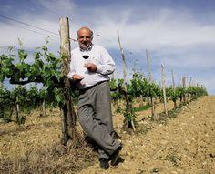 The owner: Nicolò Casini