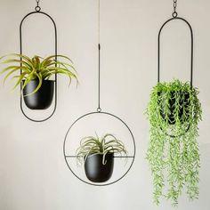Metal Plant Hangers, Metal Hanging Planters, Wall Plant Hanger, Modern Planters, Indoor Planters, Plant Wall, Indoor Outdoor, Plant Pots, Hanging Plants Outdoor
