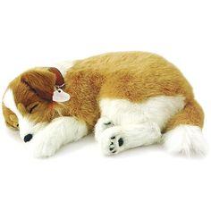 Perfect Petzzz Cachorro Lassie - Imex