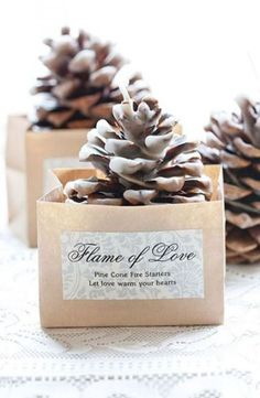 Ideas wedding winter favors for guests pine cones Christmas Wedding Favors, Winter Wedding Favors, Rustic Wedding Favors, Wedding Favors For Guests, Wedding Tokens, Wedding Gifts, Winter Weddings, Fall Wedding, Formal Wedding