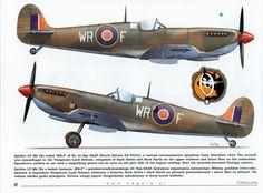 Air Force Aircraft, Ww2 Aircraft, Fighter Aircraft, Military Aircraft, Fighter Jets, Spitfire Supermarine, The Spitfires, Aircraft Painting, Military Pictures