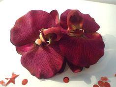 CLIP CORSAGE PINCE CHEVEUX DOUBLE FLEURON ORCHIDEE BORDEAUX fleurs artificielles