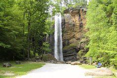 The Toccoa Falls
