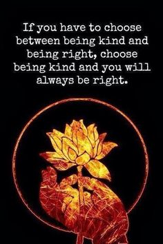 If you have the choose between being kind and being right, choose being kind and you will always be right.