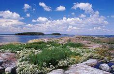 Itämeri — Luonnonsuojeluliitto