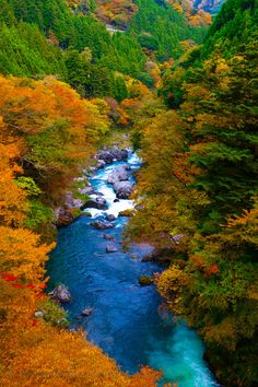 Autumn in Okutama-machi, Tokyo, Japan All Nature, Science And Nature, Amazing Nature, Mother Earth, Mother Nature, Beautiful World, Beautiful Places, Destination Voyage, Best Photographers