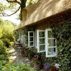 love the vine and windows...lovely