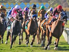 Del Mar Races...wish we were going this summer...