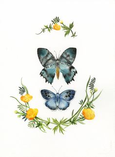 watercolor butterflies and yellow flowers
