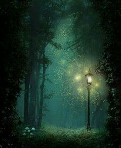 Magic fireflies
