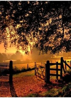 Sunrise on the farm Beautiful World, Beautiful Places, Country Life, Country Roads, Country Living, Country Charm, Foto Picture, Country Scenes, Belle Photo