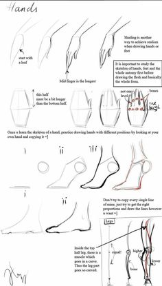 Draw Anime Draw Anime Hand and foot reference. - This image has get 1 rep. Drawing Lessons, Drawing Poses, Drawing Techniques, Drawing Tips, Drawing Ideas, Drawing Stuff, Drawing Skills, Anatomy Reference, Art Reference Poses