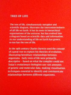 Evolutionary Biology Exhibition at The British Library. The tree of life & the interconnectedness of all life on Earth. Darwin & beyond.