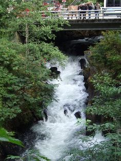 ketchikan - Google Search