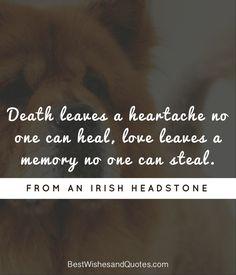 Lost Pet   Gesegdes   Pet loss quotes, Pet poems, Pet quotes dog
