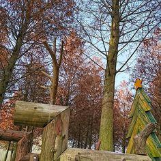 【bear_shen】さんのInstagramをピンしています。 《🐨🐎🦄🐾🌲🌵🌲#🍂#🍁 #午安 #路過 巧遇麋鹿 May the forest be with u✌ 聽縮,,這片森林有點紅🤔  覺得--狠路邊的一個秘境 真的在路邊  還。蠻。紅。derrrXD  #forest#fairytale#reindeer#lovely#park#chillin#wanderlusting#beautiful#takeawalk#outsideisfree#bluesky#orange#red#wood#trees#lines#backtonature#relaxtime#getlost#wintertimesunshine#vscotaiwan#iseetaiwan#落雨松#森林#秘密基地#也是醉了》