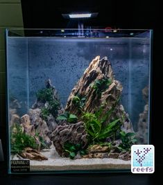2018 Aquatic Experience Coverage Part II: Aquascaping Contest - The entire second part of my Aquatic Experience 2018 Coverage is dedicated to showcasing every single tank entered into the Fourth Aquatic Experience Turtle Aquarium, Aquarium Garden, Aquarium Landscape, Nano Aquarium, Aquarium Design, Aquarium Fish Tank, Planted Aquarium, Cool Fish Tanks, Tropical Fish Tanks