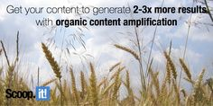 Find out how to get your content to generate more results by using organic content amplification. By Using, Lead Generation, Content Marketing, Period, You Got This, Investing, Sad, Budget, How To Get