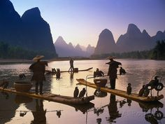 Cormorant, Fisherman, China Photographic Print at AllPosters.com