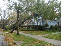 Hurricane Sandy ravages Staten Islands North and West Shores Hurricane Sandy, Staten Island, Islands, Sidewalk, York, Nature, Naturaleza, Side Walkway, Walkway