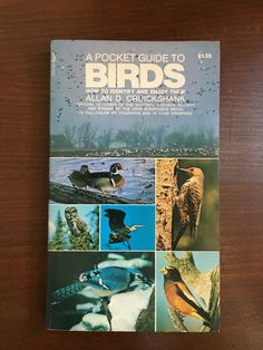 A Pocket Guide to Birds Vintage Nature Book Field Guide Bird