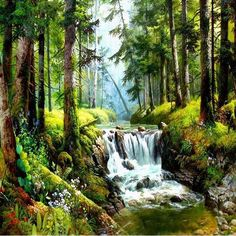Forest Waterfall - Express
