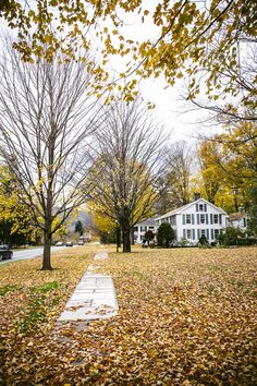 Ever wanted to see Vermont in the fall? Check out my quick guide for the best time to experience the best fall foliage and best places to visit in Vermont in the fall. Thing 1, Cool Places To Visit, Vermont, Things To Do, Sidewalk, Mansions, Autumnal, House Styles, Fall