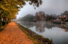 Golden Foggy Canal Towpath