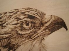 1000+ images about Pyrography on