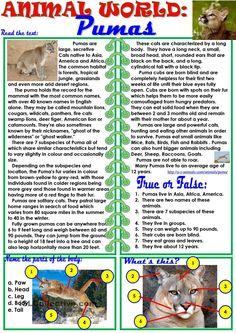 Animal World:Pumas worksheet. ESL worksheet of the day by Ktam. April 5, 2015