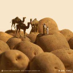 L'artiste japonais Tatsuka Tanaka ne manque d'imagination. Depuis avril 2011, il…