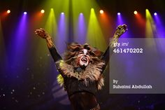 SINGAPORE - JANUARY 13: Performer Earl Gregory plays the character Rum Rum Tugger for the musical 'CATS' during a media preview at the Marina Bay Sands Mastercard Theatre on January 13, 2015 in Singapore. The musical by Andrew Lloyd Webber, holds the record for one of the longest running musical in West End history playing for 21 years and will make a return to Singapore from January 9 to February 1, 2015. (Photo by Suhaimi Abdullah/Getty Images)