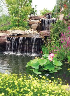 Lovely little waterfall & lily pond, just part of the gorgeous gardens at the home of Bob Haney, owner of Town Creek Landscaping, Pools & Construction in Woodbine, Maryland. Would love to have something like this at MY home someday!