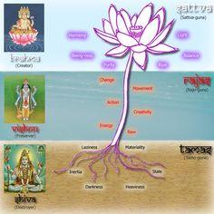 Understanding the 3 Gunas in Ayurveda and the relationship between food and a healthy mind/body Yoga Kundalini, Chakra Meditation, Om Namah Shivaya, Chakras, Mudras, Yoga Philosophy, Ayurvedic Medicine, Holistic Medicine, Vedic Astrology