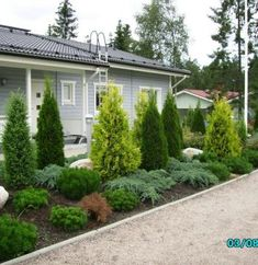 Referenssit - Havupiha Semi Detached, Detached House, Pergola, Outdoor Structures, Flowers, Plants, Home, Gardening, Ad Home