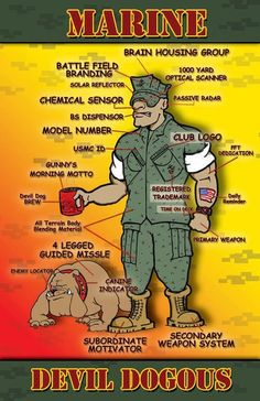 Anatomy of a Marine