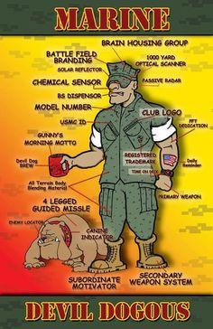 Anatomy of a Marine