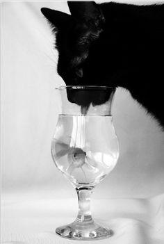 Thirsty~♛