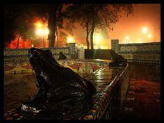 The Frog Fountain at the Alameda park in Saltillo, Mexico--I love it lit up at night like that!